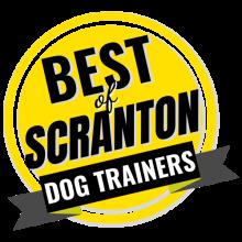 Best-of-Scranton